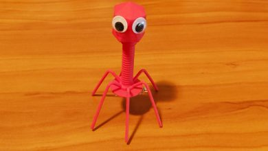 Photo of Bacteriophage Redux